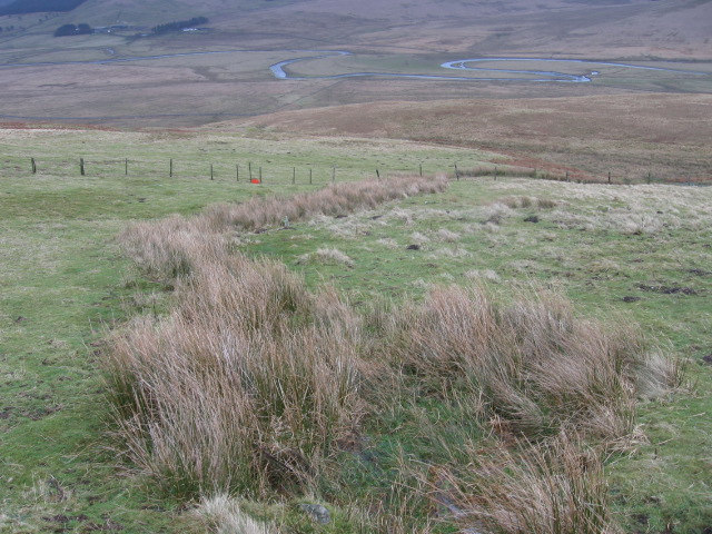 Hillside towards Daer Water