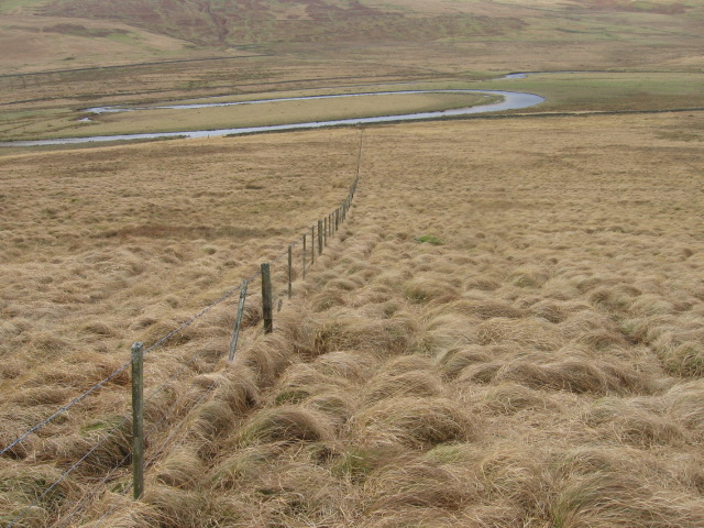 Below Brown Hill towards Daer Water