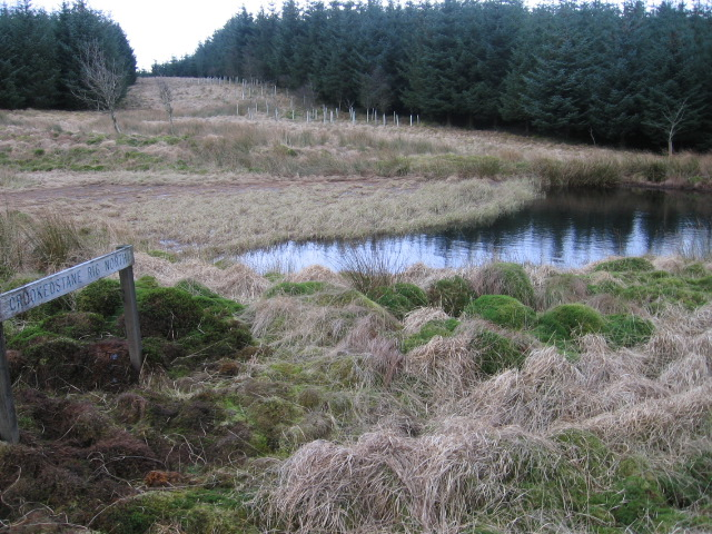 Pond and Firebreak at Crookedstane Rig North