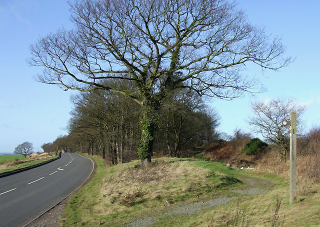 B4176 and the Staffordshire Way Footpath