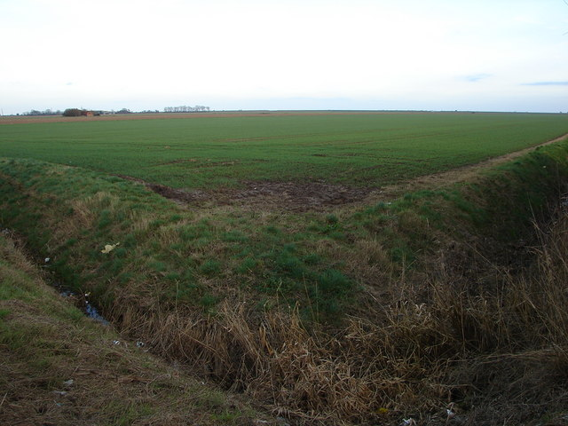 Fields Near Greens Marsh