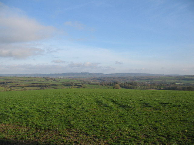 Farmland  off Creech Hill Lane