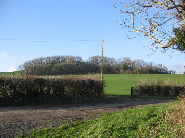 Creech Hill Lane