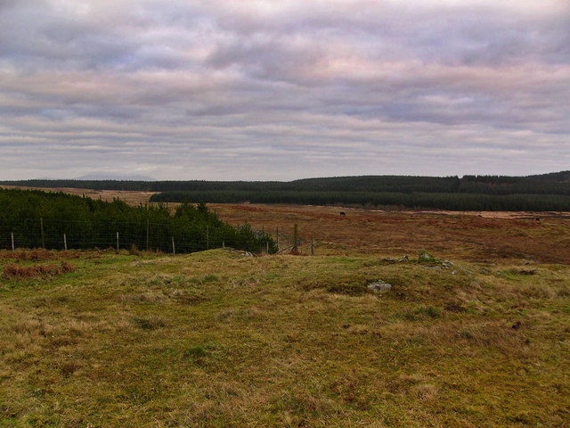 Moorland near the Wood of Dervaird