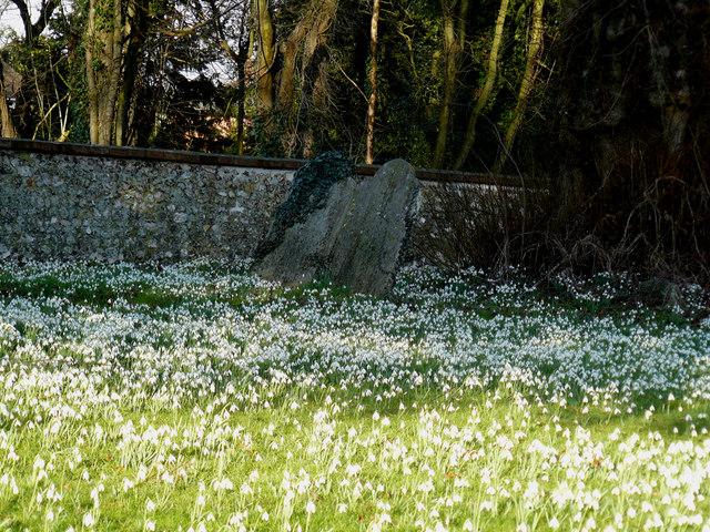 Amport - Churchyard