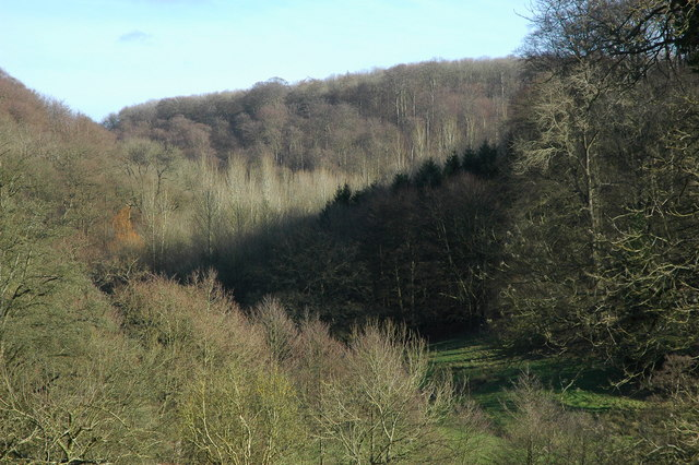 Workmans Wood, Sheepscombe