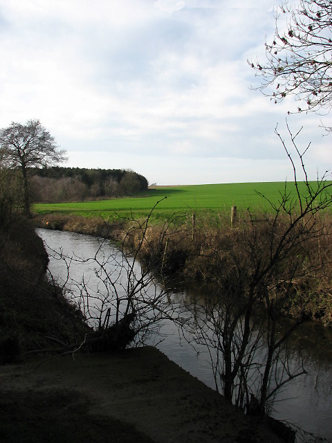 The River Tiffey