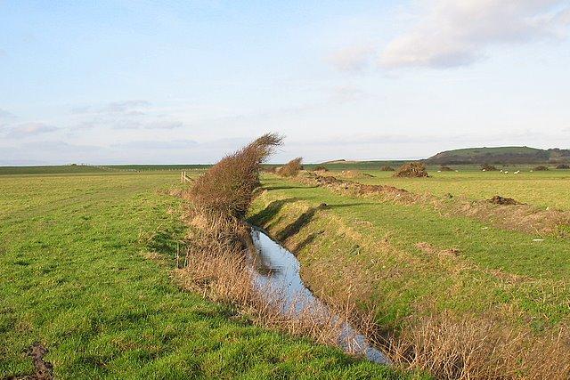 Wind blown on Dowlais ditch