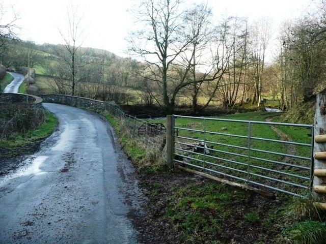 Lane towards Cwm Crickadarn