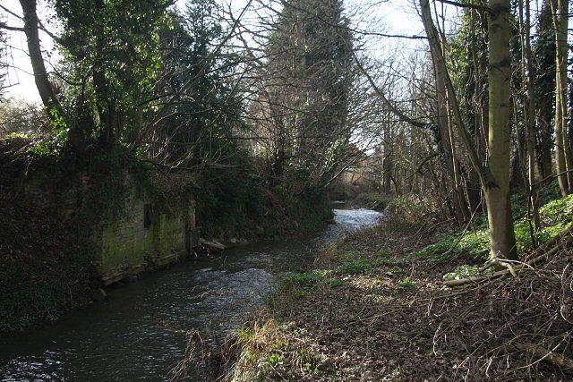River Lark at Ram Meadow