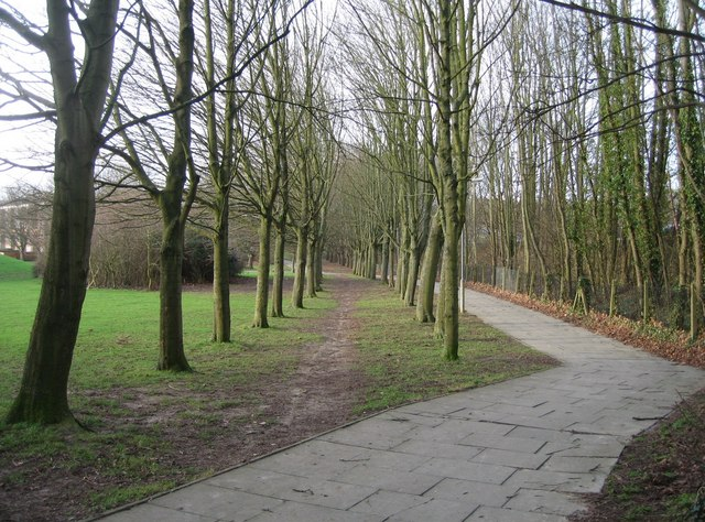 Footpath close to Danes Hill playing fields