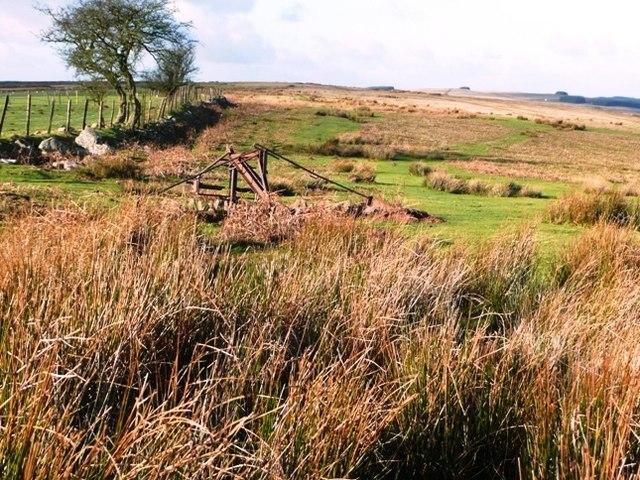 Moorland at last