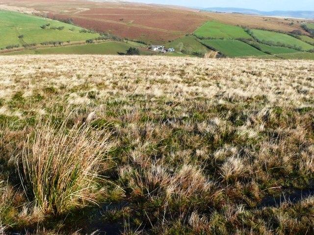 Moorland above Nantyroffeiriad