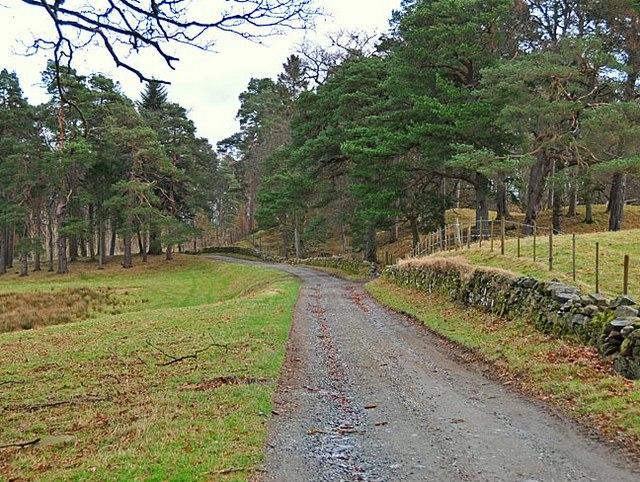 Estate Track, near to Aberuchill