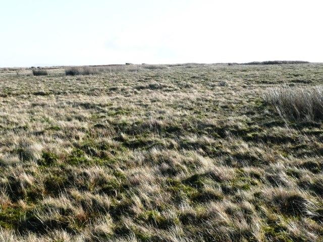 More moorland