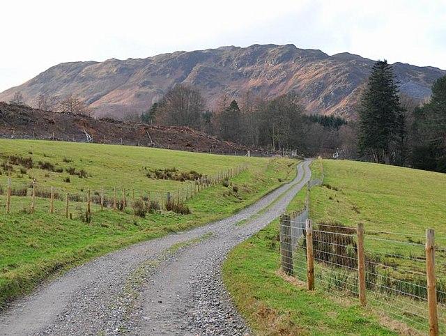 Estate Track above Aberuchill Castle