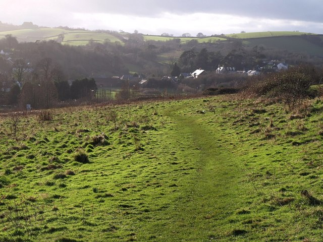 Scott's Meadow: view towards Edginswell