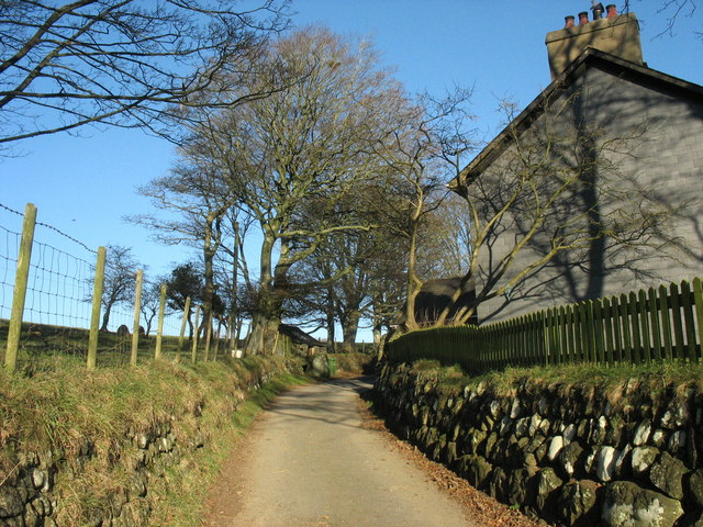 The lane past Gwnhinger