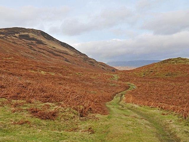 Hill Track near Carsehalton , looking North