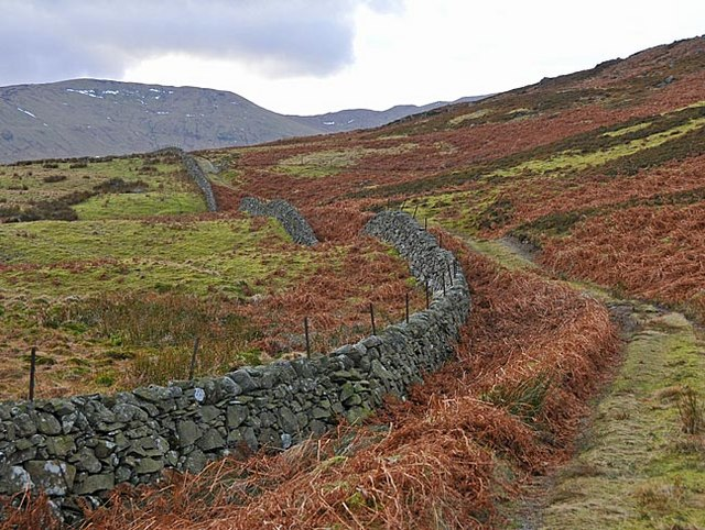 Drystane Dyke and track over moorland