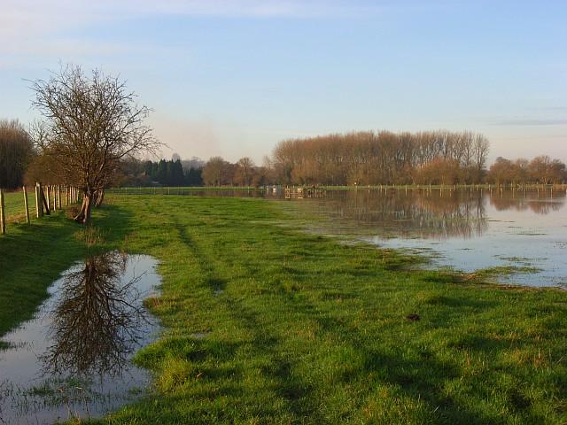 The Thames floodplain, Sonning