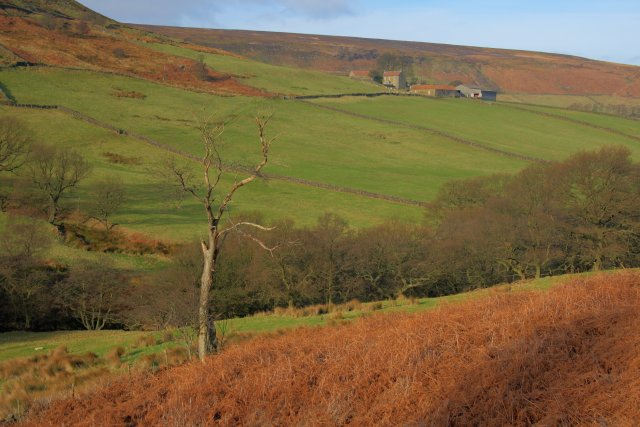View Across the Esk Valley