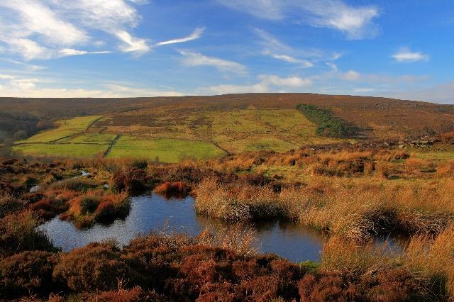 Small Pond Below Esklets Crag