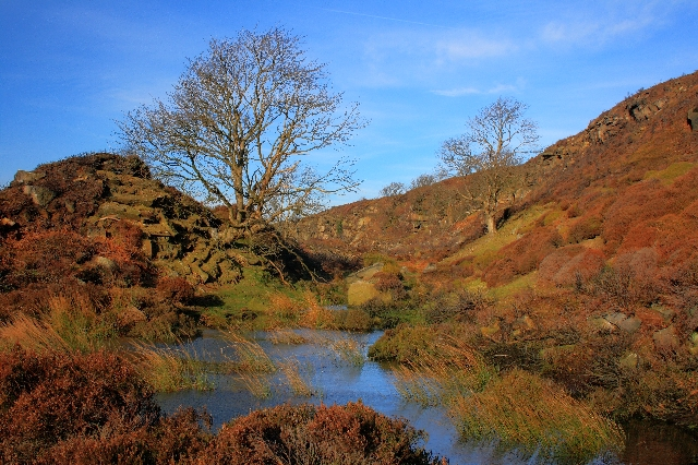 Pond Below Esklets Crag