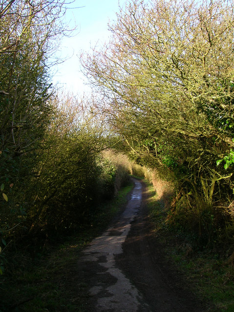 Cow Lane