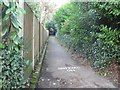 SZ0791 : Bournemouth: higher footpath to Branksome Wood Road by Chris Downer