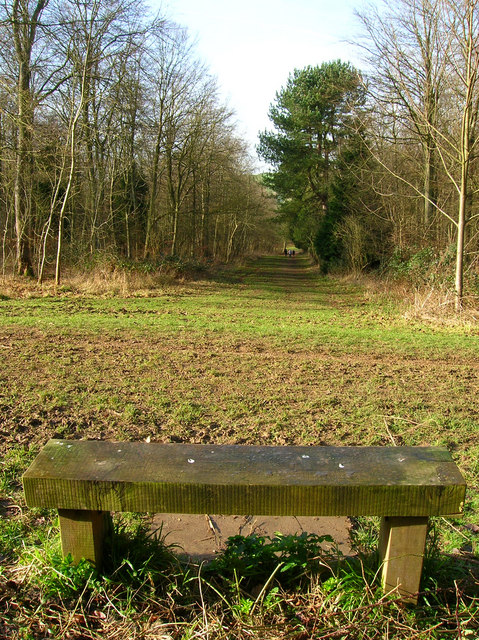 Seat, Friston Forest