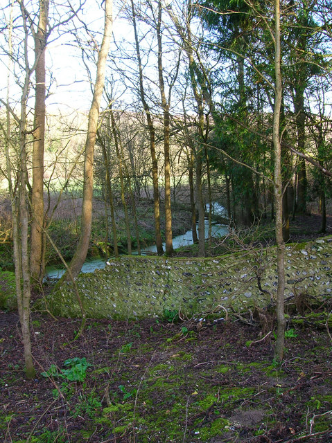 Old Wall, Friston Forest