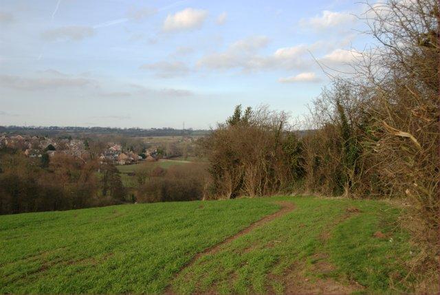 Field boundary looking towards Ockbrook