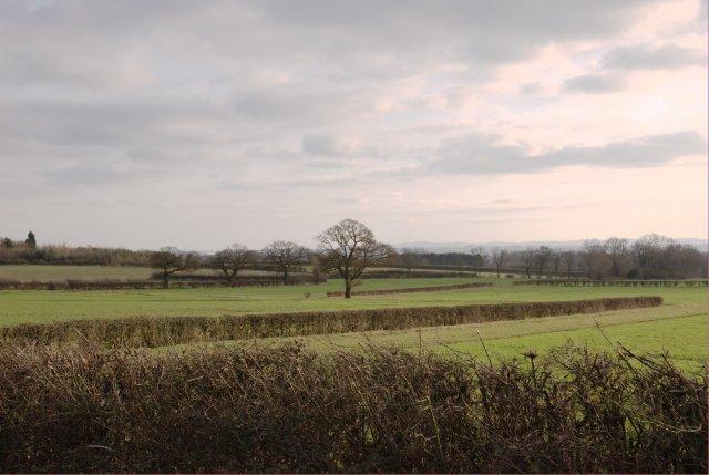 Fields near Ockbrook