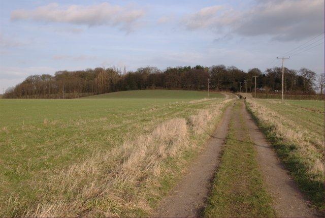 Track towards Hopwell Hall