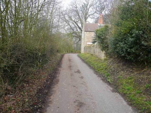 Love Lane View