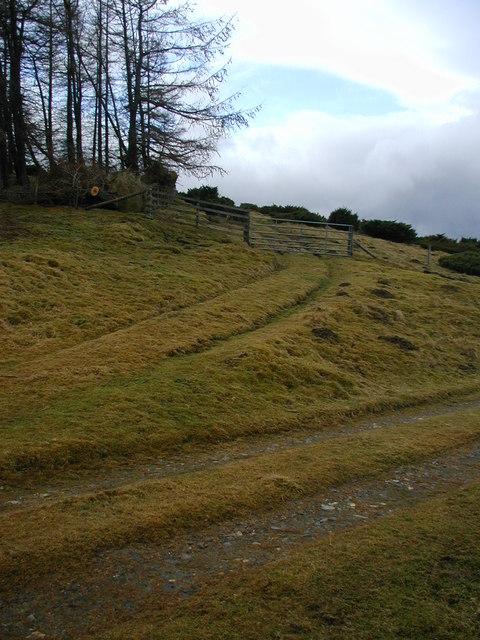 Track junction in Glen Ernan
