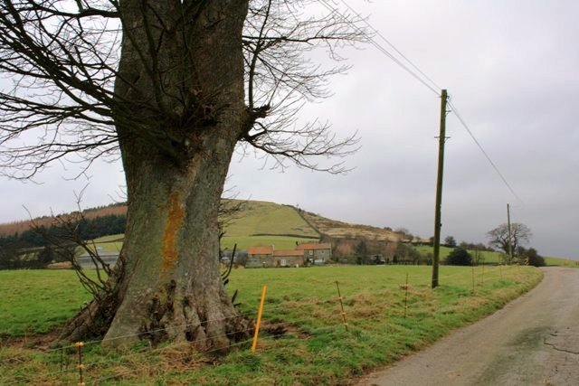 Road to Hill End Farm