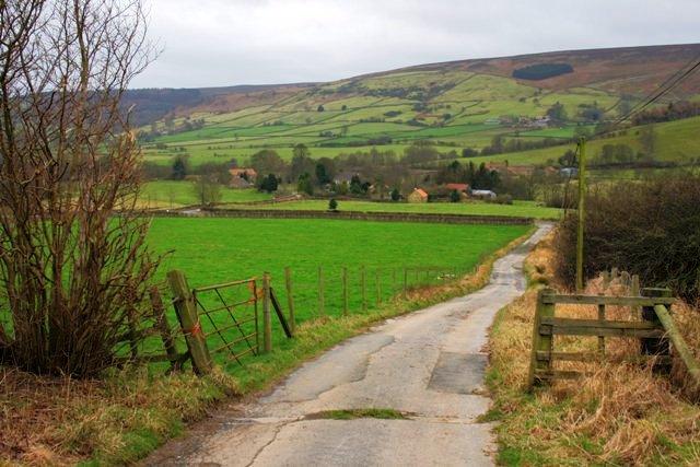 View Across Bilsdale