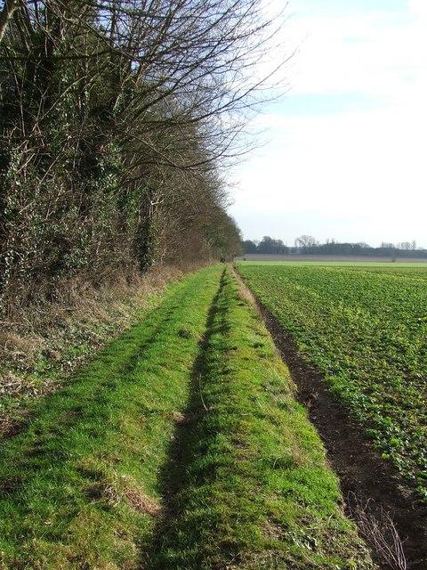 Green field boundary