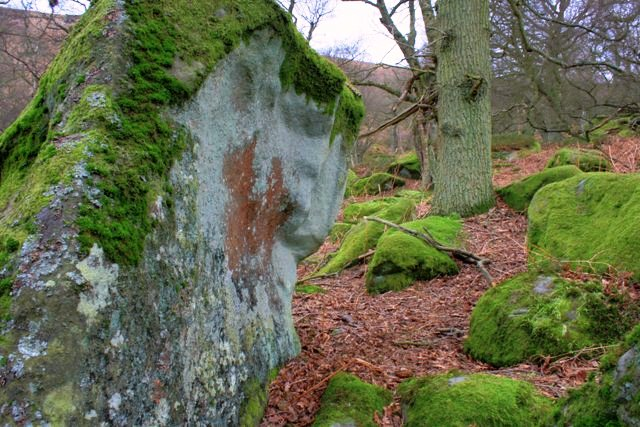 Boulder in the Woods Aligning Tarn Hole Beck