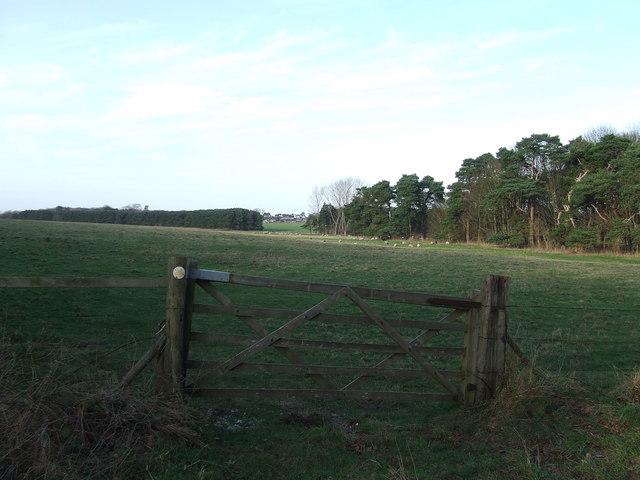 Gated footpath