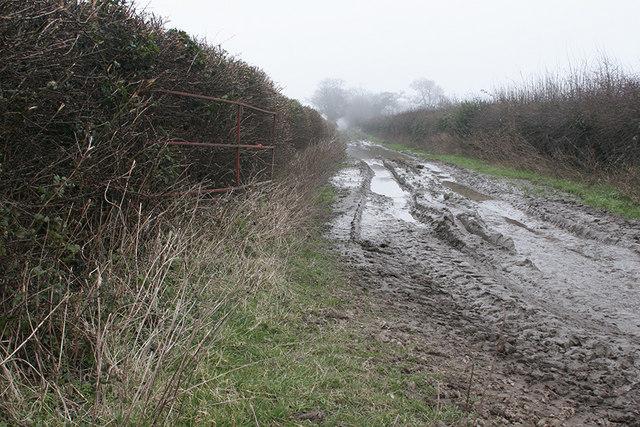 Looking East along Heath Lane
