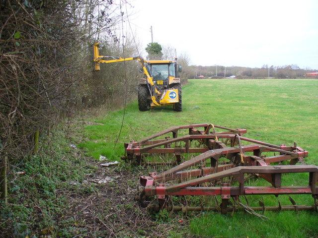 Hedge-cutting, Warnborough Green