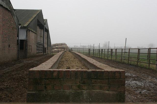 Prepared cattle feed beside farm buildings