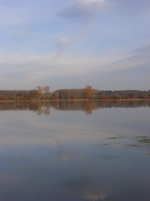 The Thames floodplain, Sonning