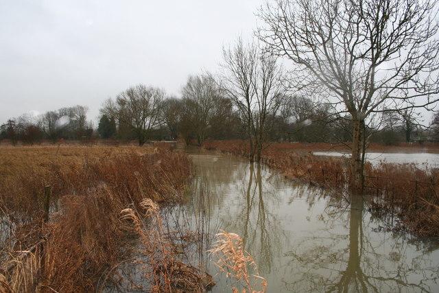 Ferry Lane Flooded