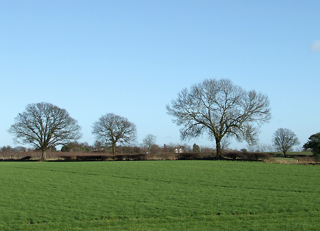 Fields at Whittimere, Staffordshire