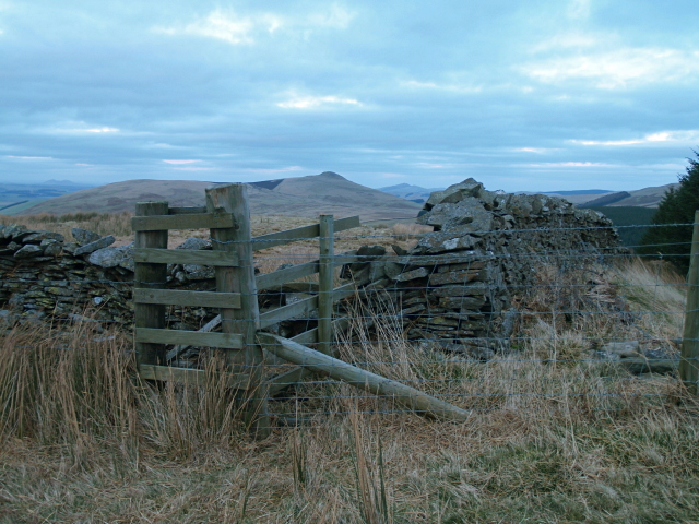 Wall and fence junction, Muckle Knowe