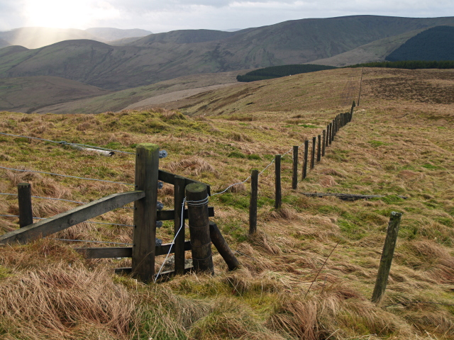 Fence junction, Starcleuch Edge